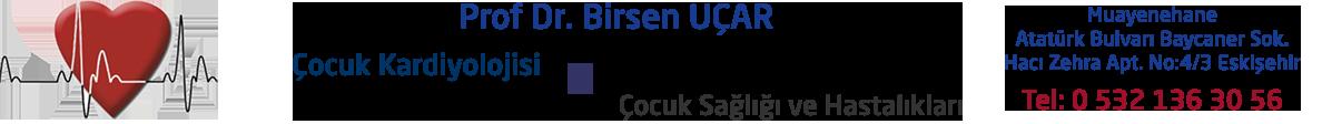 Prof. Dr. Birsen Uçar